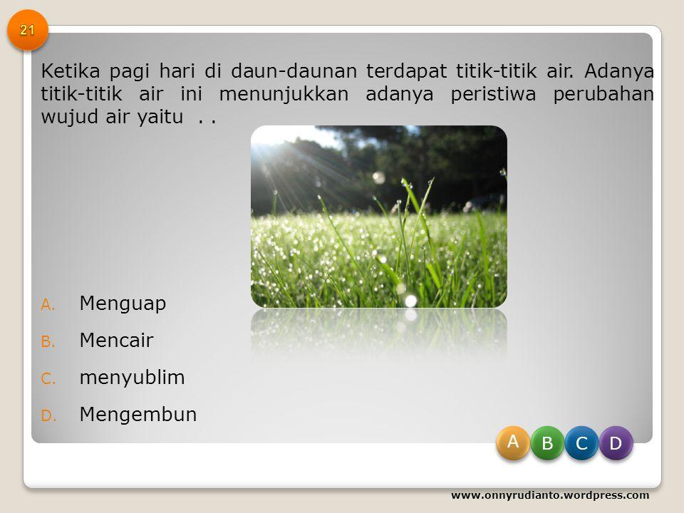 Untuk mencegah penyakit scorbut/sariawan dianjurkan mengkonsumsi makanan yang banyak mengandung... A. Vitamin K B. Vitamin C C. Vitamin B D. Vitamin A