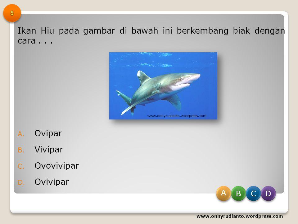 Badak merupakan salah satu satwa yang dilindungi di Indonesia, sehingga perlu dilestarikan. Pelestarian Badak ini bertujuan... A. Agar habitatnya tida