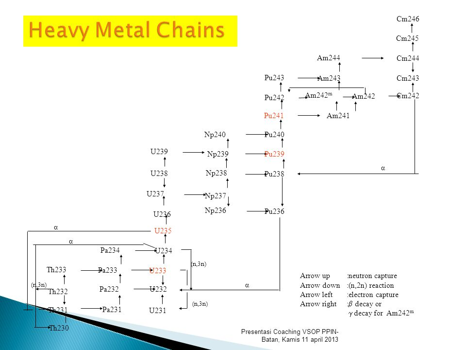 Presentasi Coaching VSOP PPIN- Batan, Kamis 11 april 2013 Heavy Metal Chains Arrow up :neutron capture Arrow down:(n,2n) reaction Arrow left :electron capture Arrow right:  decay or  decay for Am242 m