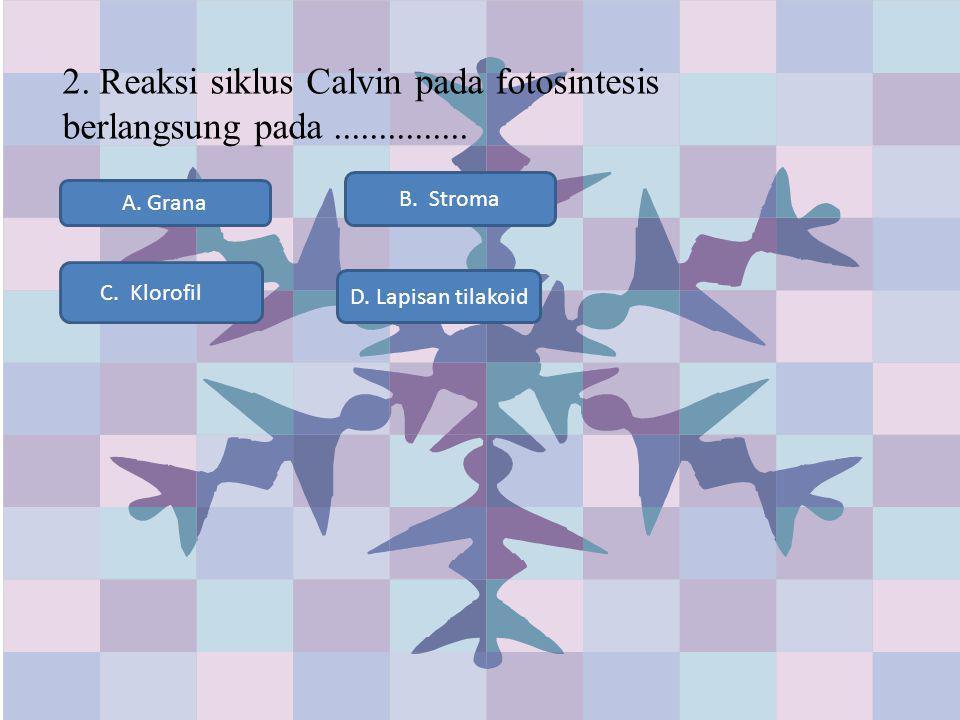 2. Reaksi siklus Calvin pada fotosintesis berlangsung pada............... A. Grana C. Klorofil D. Lapisan tilakoid B. Stroma