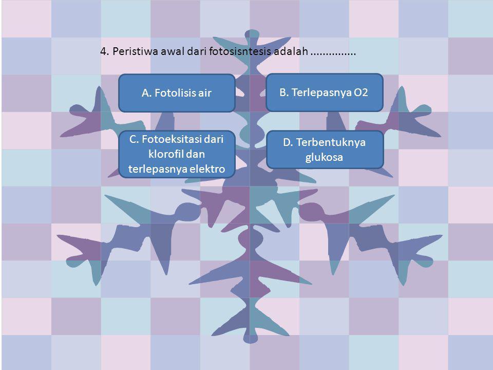 4. Peristiwa awal dari fotosisntesis adalah............... A. Fotolisis air C. Fotoeksitasi dari klorofil dan terlepasnya elektro D. Terbentuknya gluk
