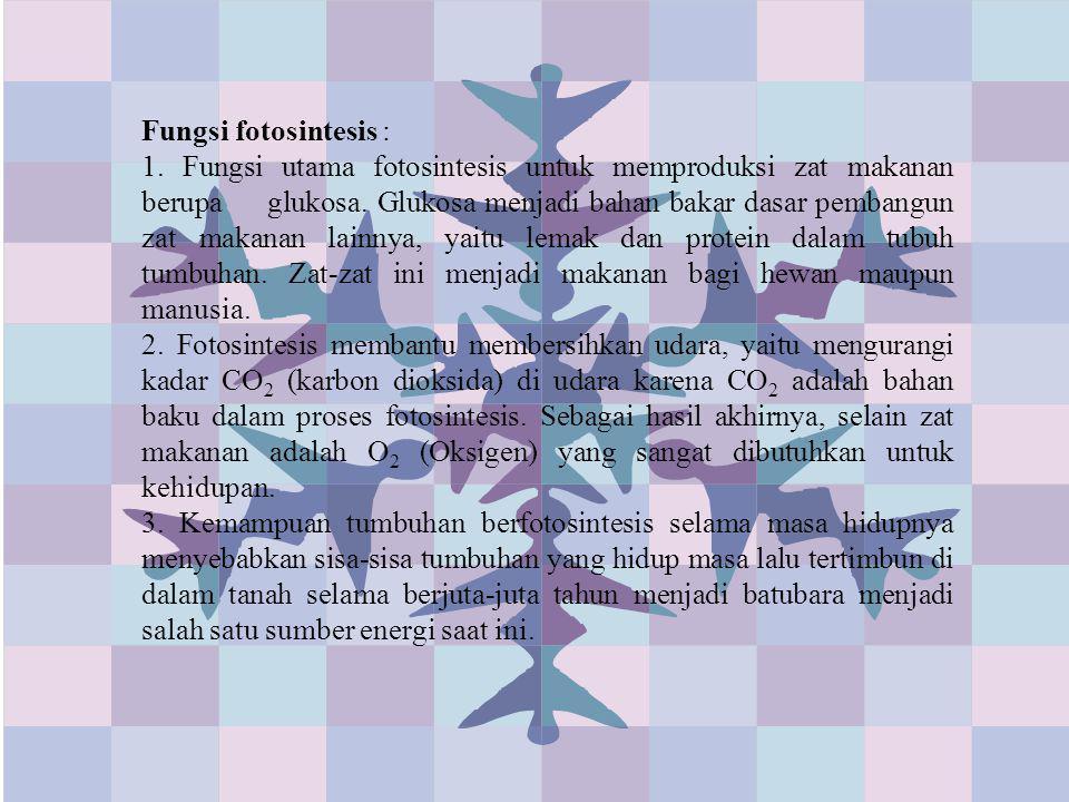 Fungsi fotosintesis : 1. Fungsi utama fotosintesis untuk memproduksi zat makanan berupa glukosa. Glukosa menjadi bahan bakar dasar pembangun zat makan