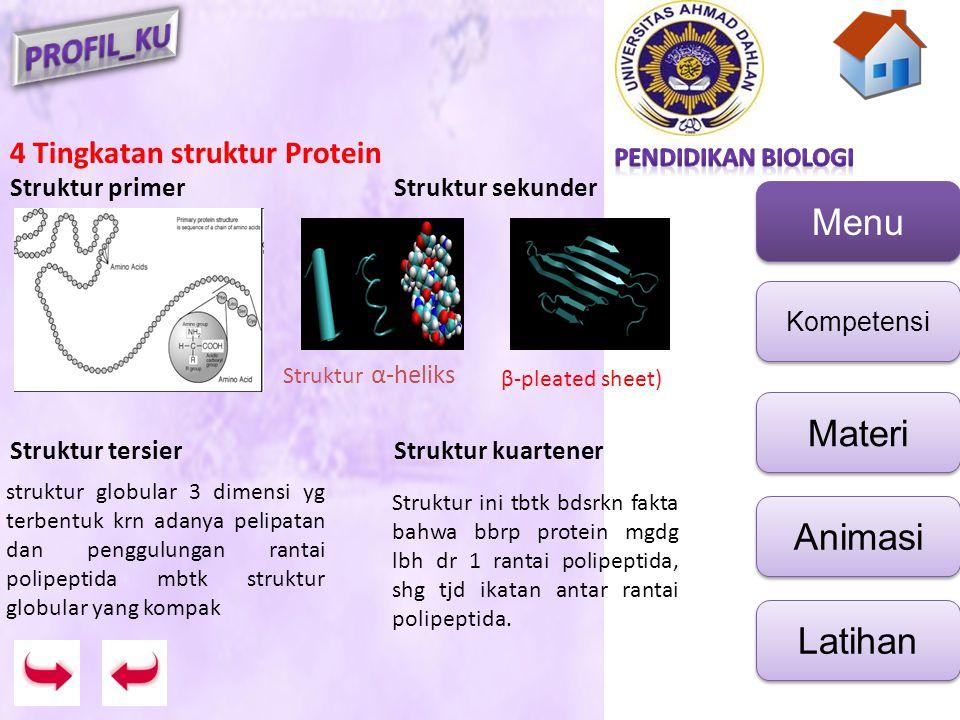 Menu Kompetensi Materi Animasi Latihan 4 Tingkatan struktur Protein Struktur primerStruktur sekunder Struktur tersierStruktur kuartener struktur globu