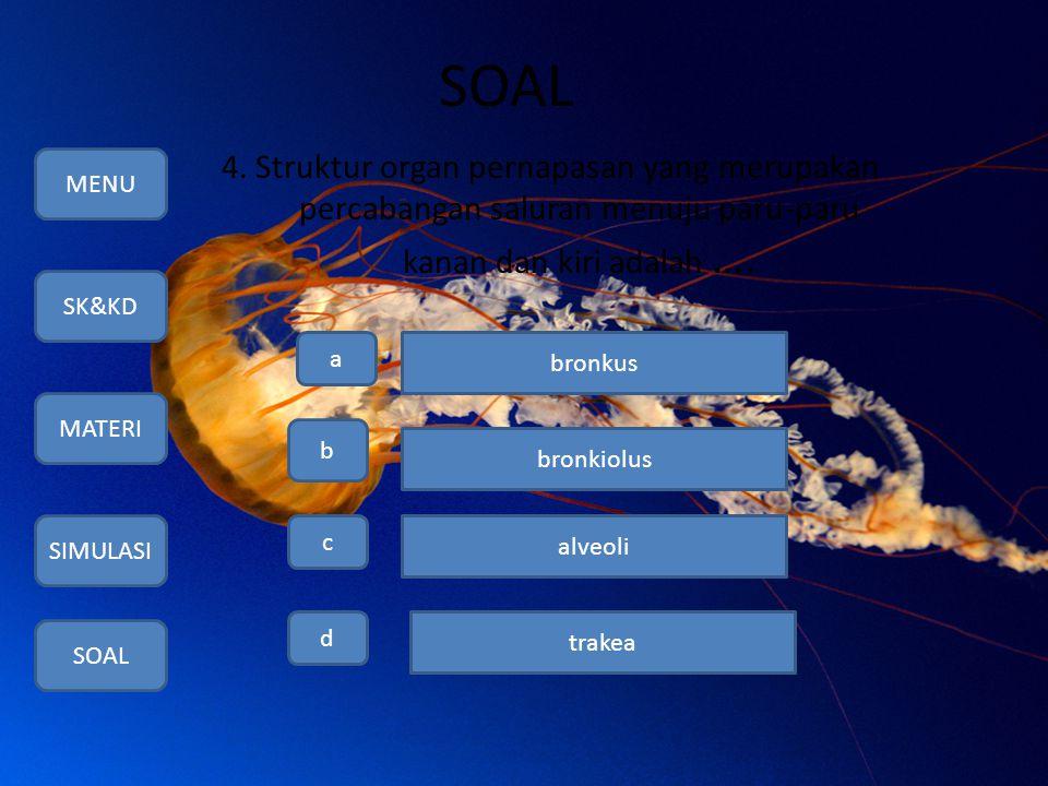 SOAL 4. Struktur organ pernapasan yang merupakan percabangan saluran menuju paru-paru kanan dan kiri adalah …. MENU SK&KD MATERI SIMULASI SOAL a b c d