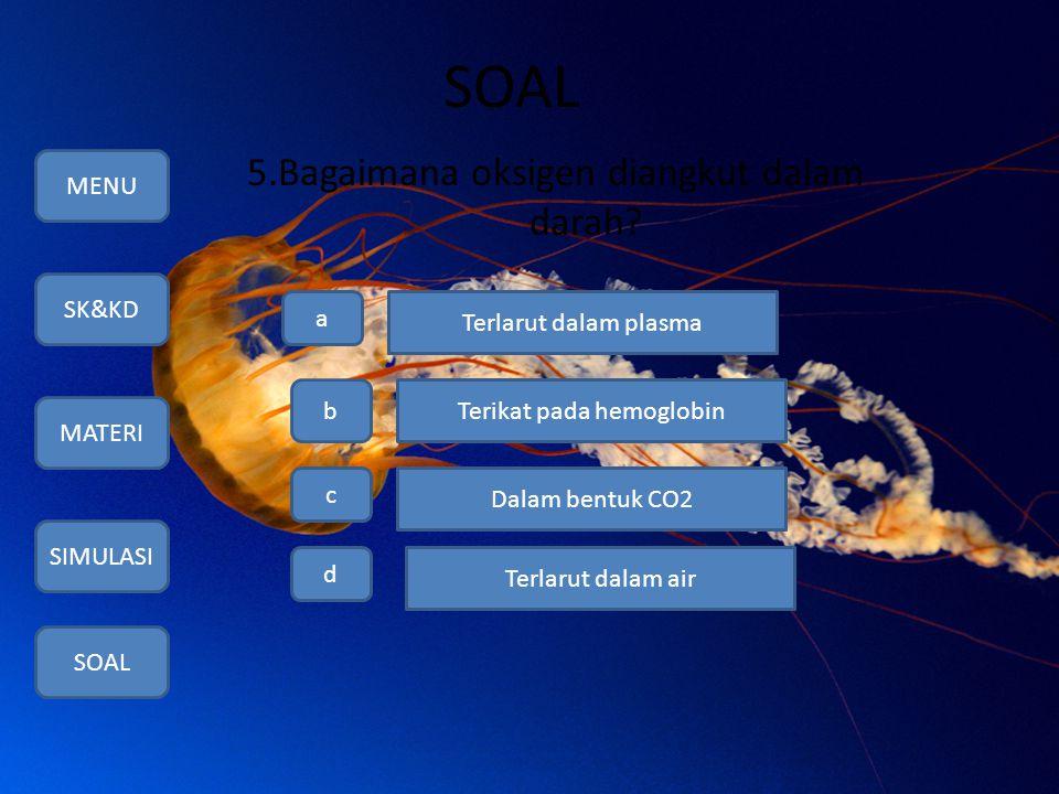 SOAL 5.Bagaimana oksigen diangkut dalam darah? MENU SK&KD MATERI SIMULASI SOAL a b c d Terlarut dalam plasma Terikat pada hemoglobin Dalam bentuk CO2