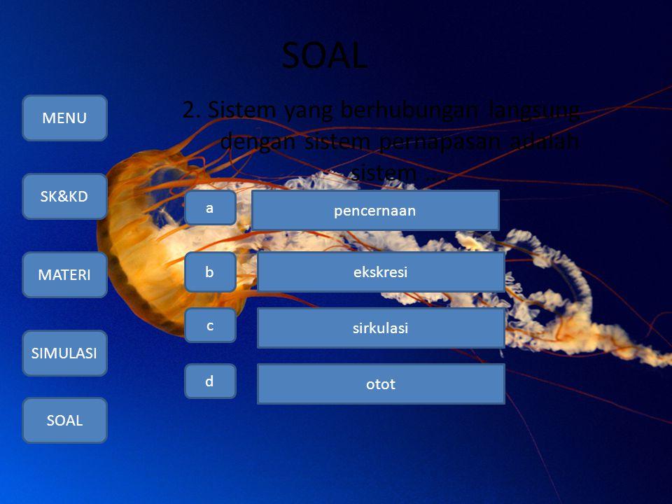 SOAL 2. Sistem yang berhubungan langsung dengan sistem pernapasan adalah sistem …. MENU SK&KD MATERI SIMULASI SOAL a b c d pencernaan ekskresi sirkula