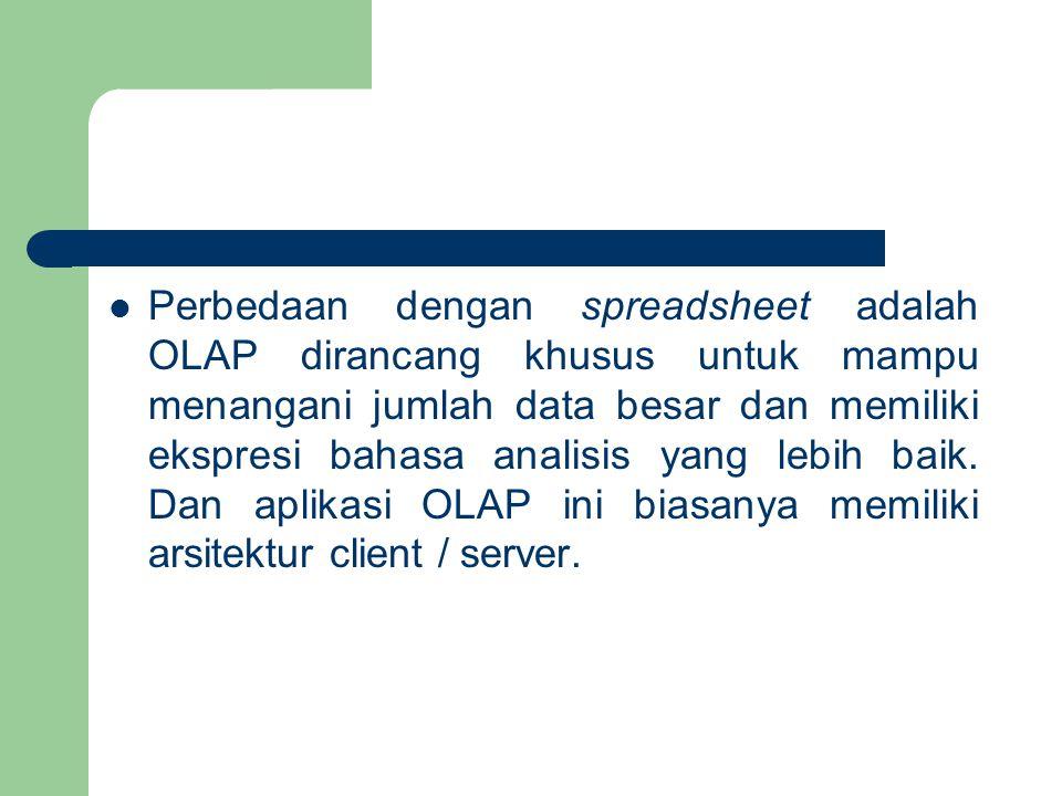Perbedaan dengan spreadsheet adalah OLAP dirancang khusus untuk mampu menangani jumlah data besar dan memiliki ekspresi bahasa analisis yang lebih bai