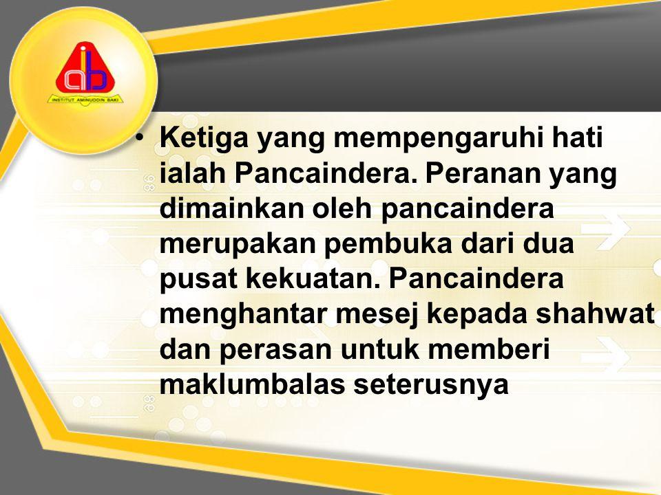 Ketiga yang mempengaruhi hati ialah Pancaindera. Peranan yang dimainkan oleh pancaindera merupakan pembuka dari dua pusat kekuatan. Pancaindera mengha
