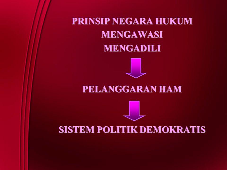 MENGAWASIMENGADILI PELANGGARAN HAM SISTEM POLITIK DEMOKRATIS