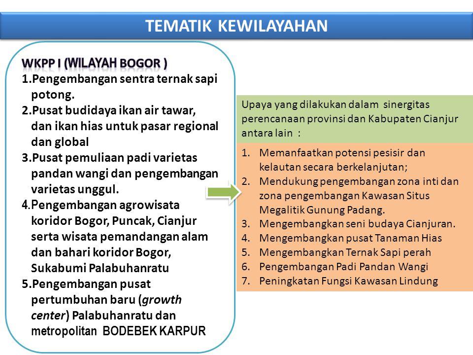 TEMATIK KEWILAYAHAN Upaya yang dilakukan dalam sinergitas perencanaan provinsi dan Kabupaten Cianjur antara lain : 1.Memanfaatkan potensi pesisir dan kelautan secara berkelanjutan; 2.Mendukung pengembangan zona inti dan zona pengembangan Kawasan Situs Megalitik Gunung Padang.