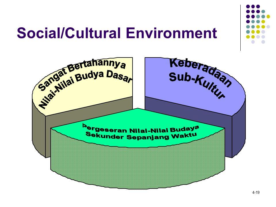4-19 Social/Cultural Environment