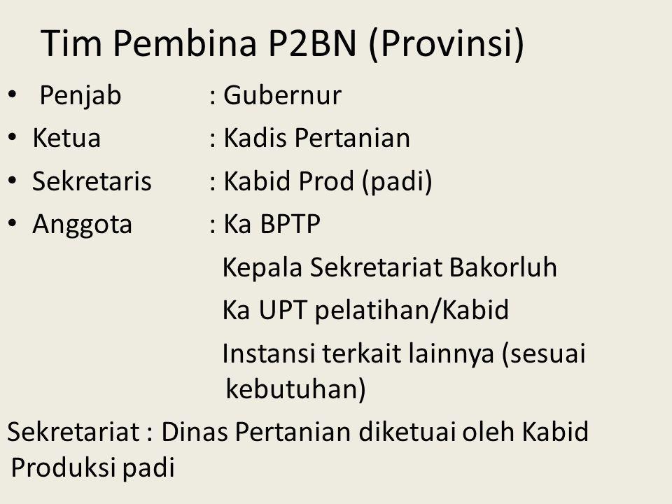 Tim Pembina P2BN (Provinsi) Penjab: Gubernur Ketua: Kadis Pertanian Sekretaris: Kabid Prod (padi) Anggota: Ka BPTP Kepala Sekretariat Bakorluh Ka UPT