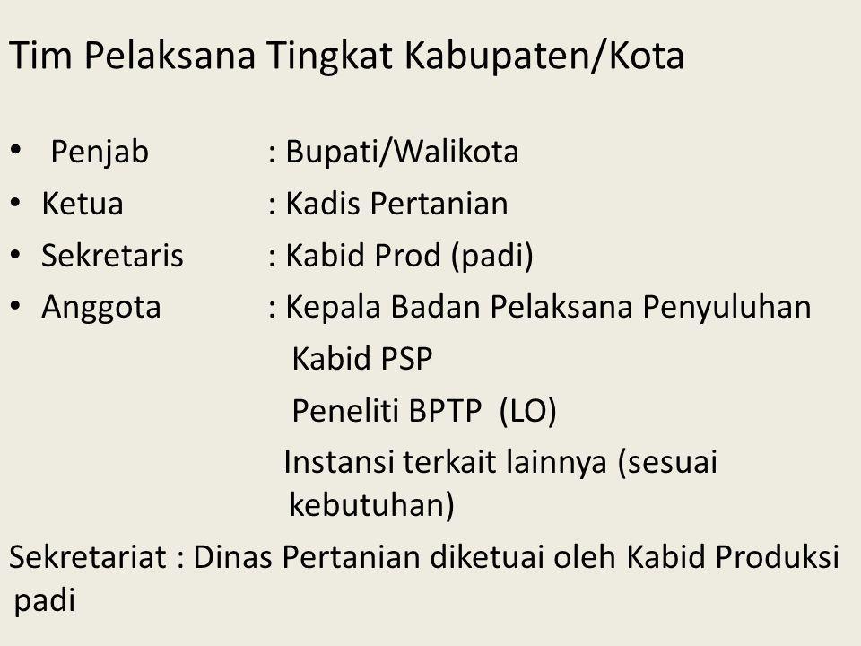 Tim Pelaksana Tingkat Kabupaten/Kota Penjab: Bupati/Walikota Ketua: Kadis Pertanian Sekretaris: Kabid Prod (padi) Anggota: Kepala Badan Pelaksana Peny