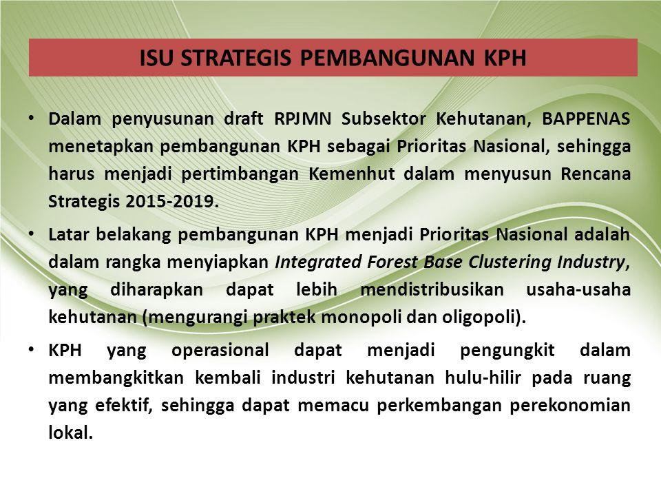 Dalam penyusunan draft RPJMN Subsektor Kehutanan, BAPPENAS menetapkan pembangunan KPH sebagai Prioritas Nasional, sehingga harus menjadi pertimbangan