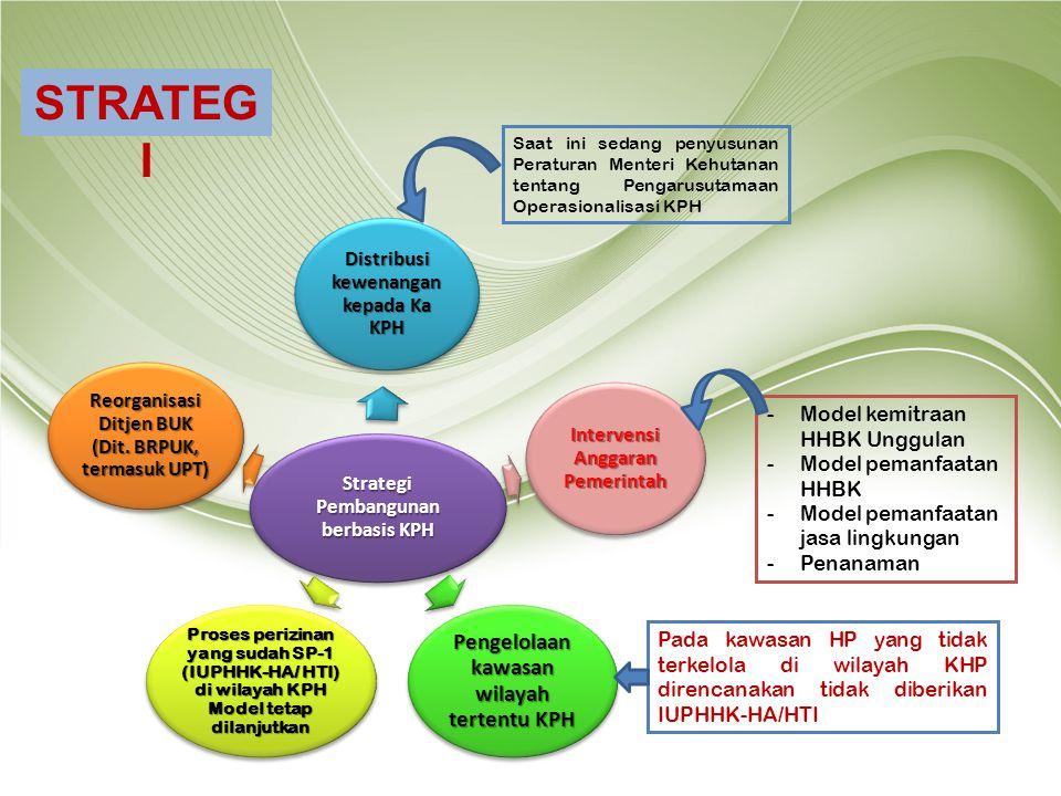 Strategi Pembangunan berbasis KPH Distribusi kewenangan kepada Ka KPH Intervensi Anggaran Pemerintah Pengelolaan kawasan wilayah tertentu KPH Proses p