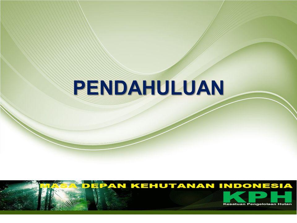 NoKriteriaIndikator/Sub IndikatorKeluaranHasilKeterangan 1.
