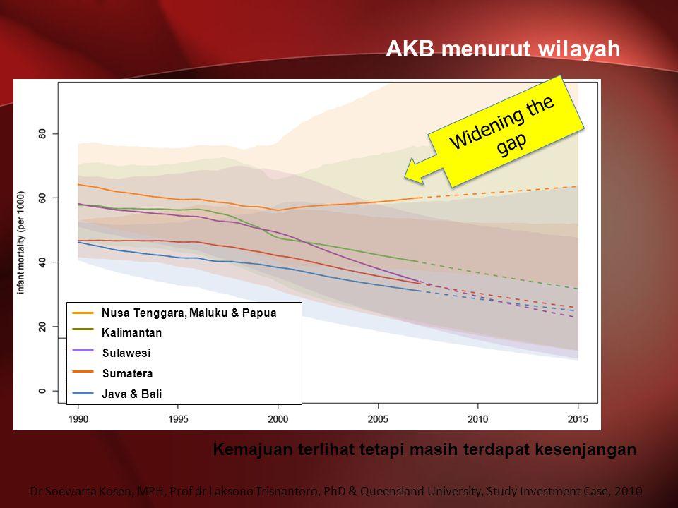 AKB menurut wilayah Widening the gap Dr Soewarta Kosen, MPH, Prof dr Laksono Trisnantoro, PhD & Queensland University, Study Investment Case, 2010 Kem