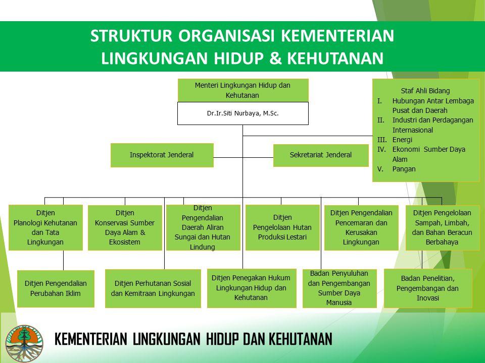 STRUKTUR ORGANISASI KEMENTERIAN LINGKUNGAN HIDUP & KEHUTANAN Inspektorat Jenderal Menteri Lingkungan Hidup dan Kehutanan Sekretariat Jenderal Ditjen P