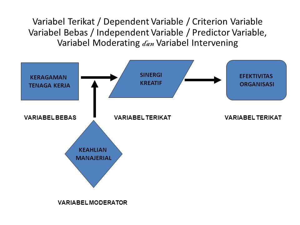 SINERGI KREATIF KERAGAMAN TENAGA KERJA EFEKTIVITAS ORGANISASI VARIABEL BEBAS VARIABEL TERIKAT sekaligus VARIABEL TERIKAT Variabel Terikat / Dependent