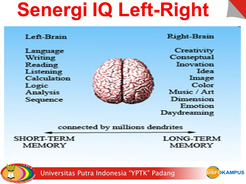 Senergi IQ Left-Right