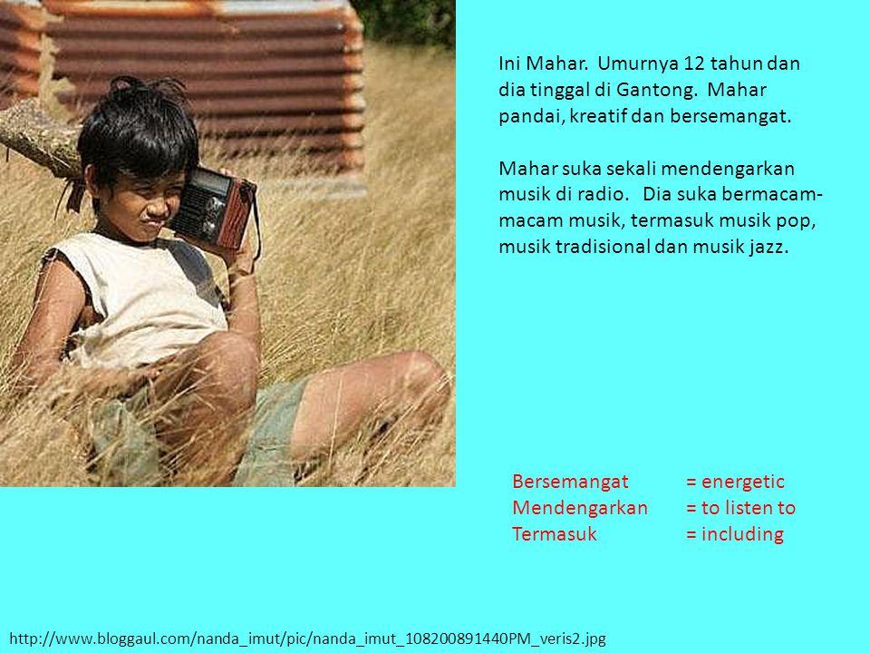 http://www.bloggaul.com/nanda_imut/pic/nanda_imut_108200891440PM_veris2.jpg Ini Mahar. Umurnya 12 tahun dan dia tinggal di Gantong. Mahar pandai, krea