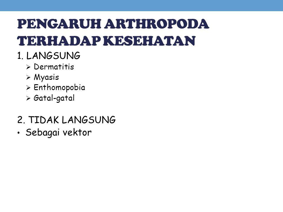 PENGARUH ARTHROPODA TERHADAP KESEHATAN 1. LANGSUNG  Dermatitis  Myasis  Enthomopobia  Gatal-gatal 2. TIDAK LANGSUNG Sebagai vektor