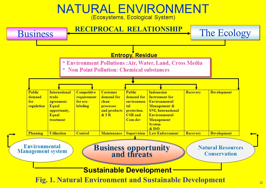 NATURAL ENVIRONMENT Business The Ecology RECIPROCAL RELATIONSHIP * Environment Pollutions :Air, Water, Land, Cross Media * Non Point Pollution: Chemic
