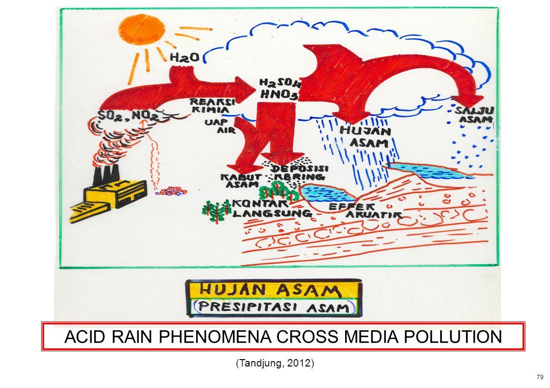 79 ACID RAIN PHENOMENA CROSS MEDIA POLLUTION (Tandjung, 2012)