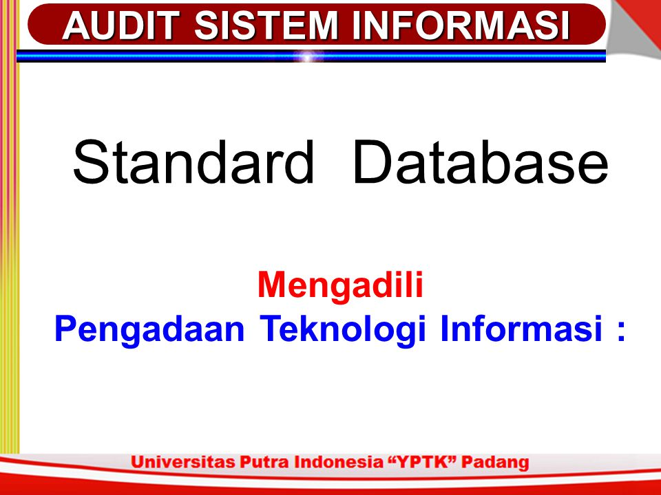 Standard Database Mengadili Pengadaan Teknologi Informasi : AUDIT SISTEM INFORMASI
