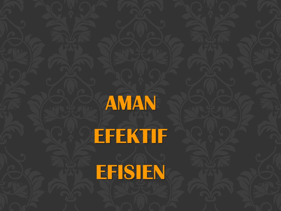 AMAN EFEKTIF EFISIEN