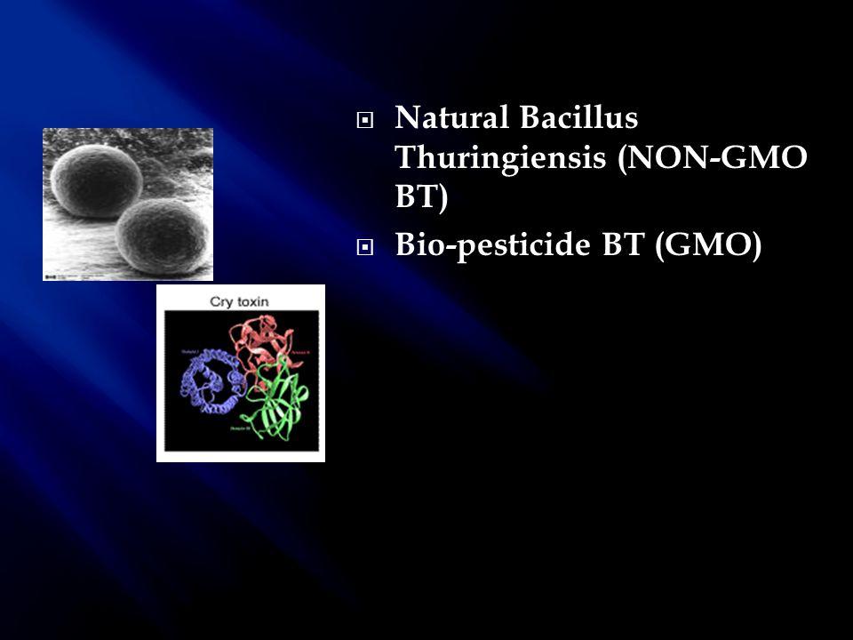  Natural Bacillus Thuringiensis (NON-GMO BT)  Bio-pesticide BT (GMO)