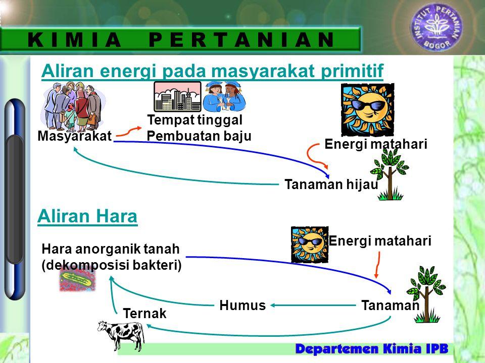 Aliran energi pada masyarakat primitif Tempat tinggal Pembuatan baju Masyarakat Energi matahari Tanaman hijau Aliran Hara Hara anorganik tanah (dekomp