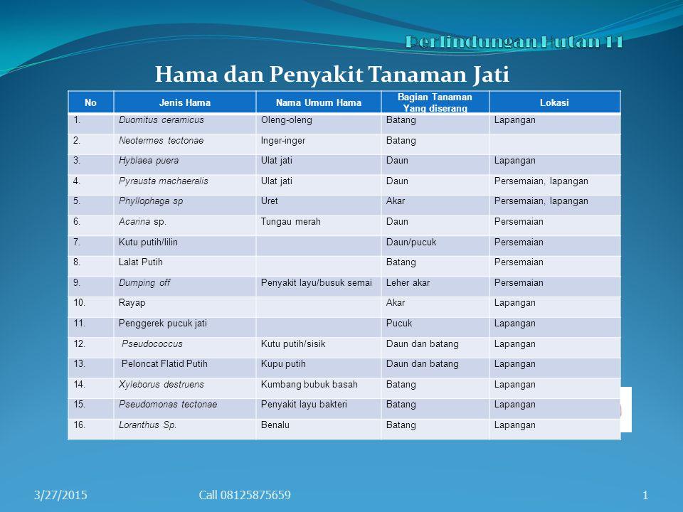 Hama dan Penyakit Tanaman Jati 3/27/2015Call 081258756591 NoJenis HamaNama Umum Hama Bagian Tanaman Yang diserang Lokasi 1.Duomitus ceramicusOleng-ole