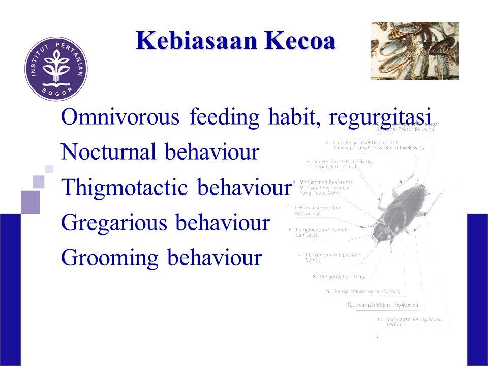 Kerugian terhadap manusia Kontaminasi Pengganggu or fear reaction Odour Allergic reaction Bites (meskipun jarang) Penular patogen: Protozoa, Bakteri, Virus, Cacing
