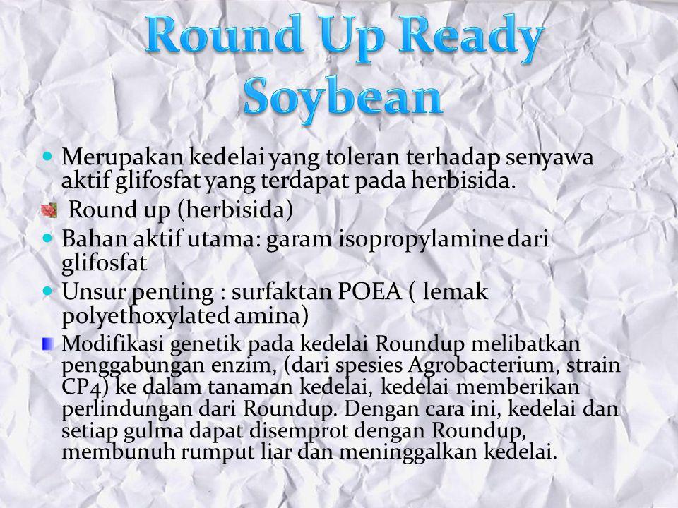 Merupakan kedelai yang toleran terhadap senyawa aktif glifosfat yang terdapat pada herbisida. Round up (herbisida) Bahan aktif utama: garam isopropyla