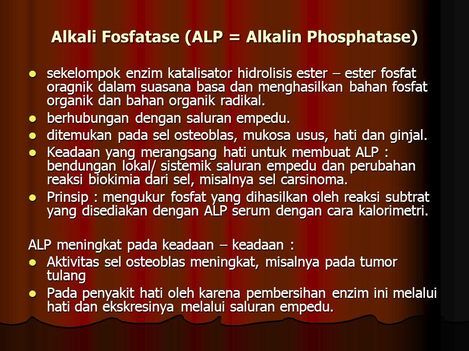 Alkali Fosfatase (ALP = Alkalin Phosphatase) sekelompok enzim katalisator hidrolisis ester – ester fosfat oragnik dalam suasana basa dan menghasilkan