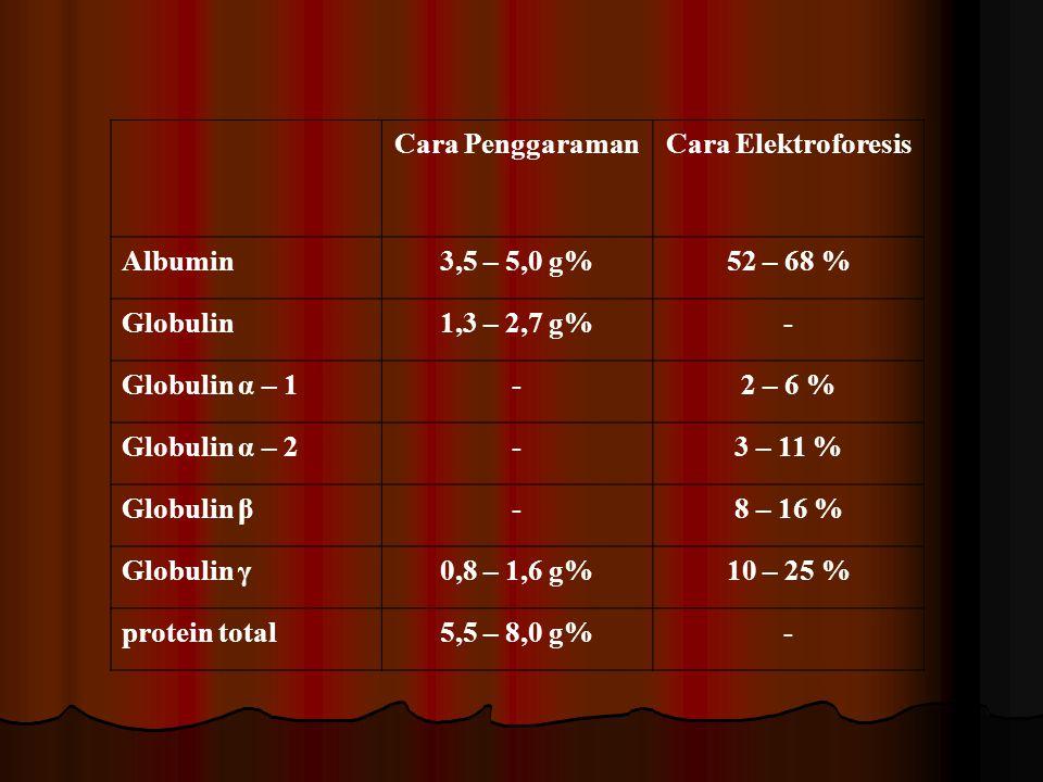Cara PenggaramanCara Elektroforesis Albumin3,5 – 5,0 g%52 – 68 % Globulin1,3 – 2,7 g%- Globulin α – 1-2 – 6 % Globulin α – 2-3 – 11 % Globulin β-8 – 1