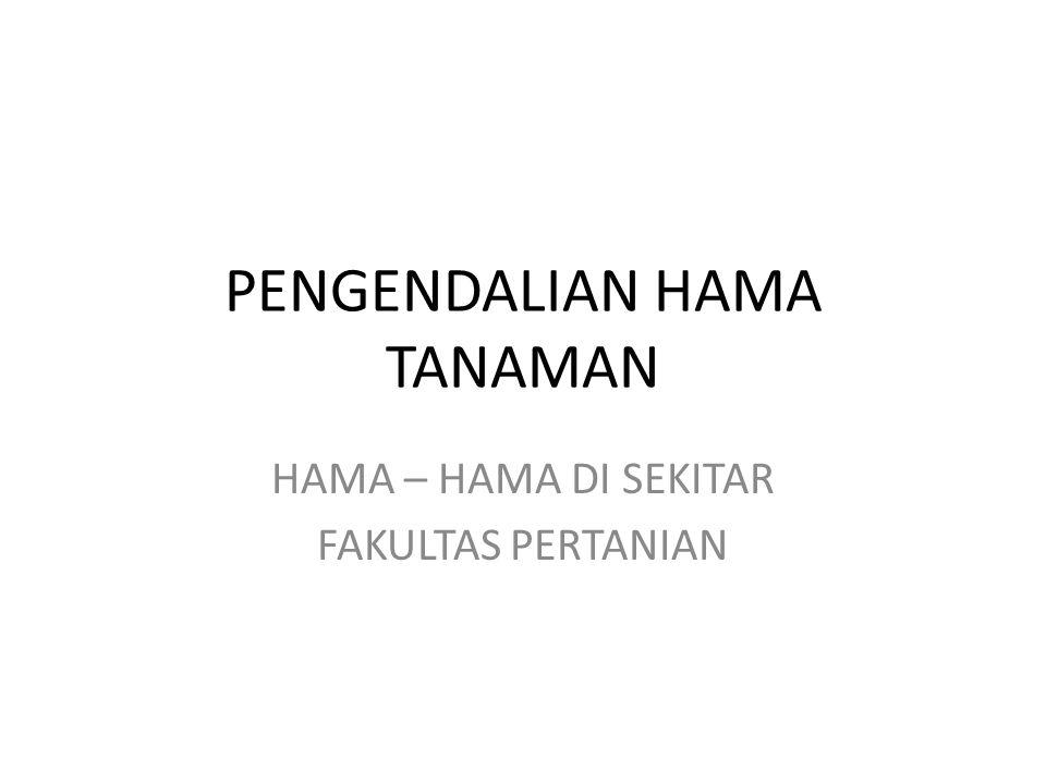 PENGENDALIAN HAMA TANAMAN HAMA – HAMA DI SEKITAR FAKULTAS PERTANIAN