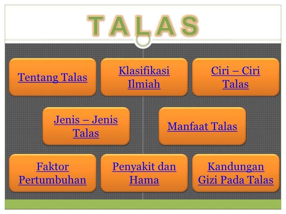 Tentang Talas Klasifikasi Ilmiah Klasifikasi Ilmiah Jenis – Jenis Talas Jenis – Jenis Talas Manfaat Talas Ciri – Ciri Talas Ciri – Ciri Talas Kandunga