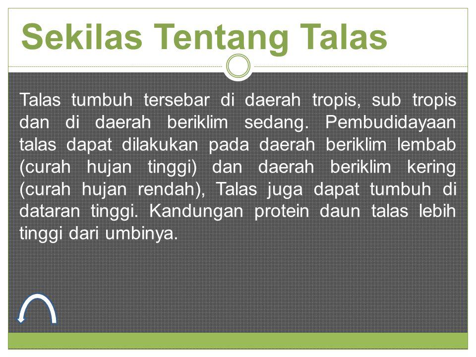 Sekilas Tentang Talas Talas tumbuh tersebar di daerah tropis, sub tropis dan di daerah beriklim sedang. Pembudidayaan talas dapat dilakukan pada daera