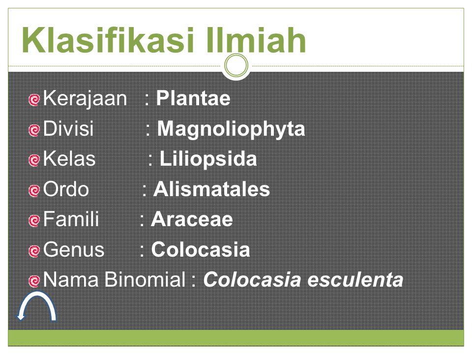 Klasifikasi Ilmiah Kerajaan : Plantae Divisi : Magnoliophyta Kelas : Liliopsida Ordo : Alismatales Famili : Araceae Genus : Colocasia Nama Binomial :