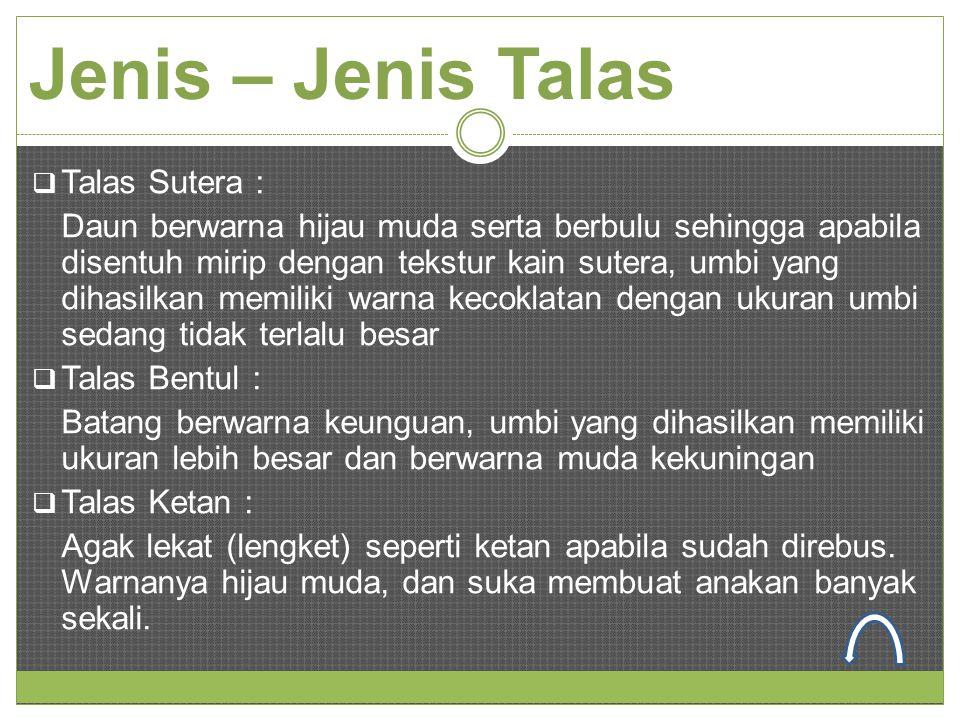 Jenis – Jenis Talas  Talas Sutera : Daun berwarna hijau muda serta berbulu sehingga apabila disentuh mirip dengan tekstur kain sutera, umbi yang diha