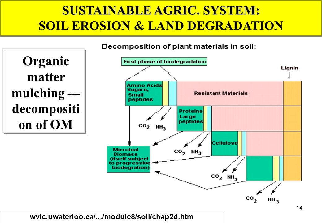 14 SUSTAINABLE AGRIC. SYSTEM: SOIL EROSION & LAND DEGRADATION Organic matter mulching --- decompositi on of OM wvlc.uwaterloo.ca/.../module8/soil/chap