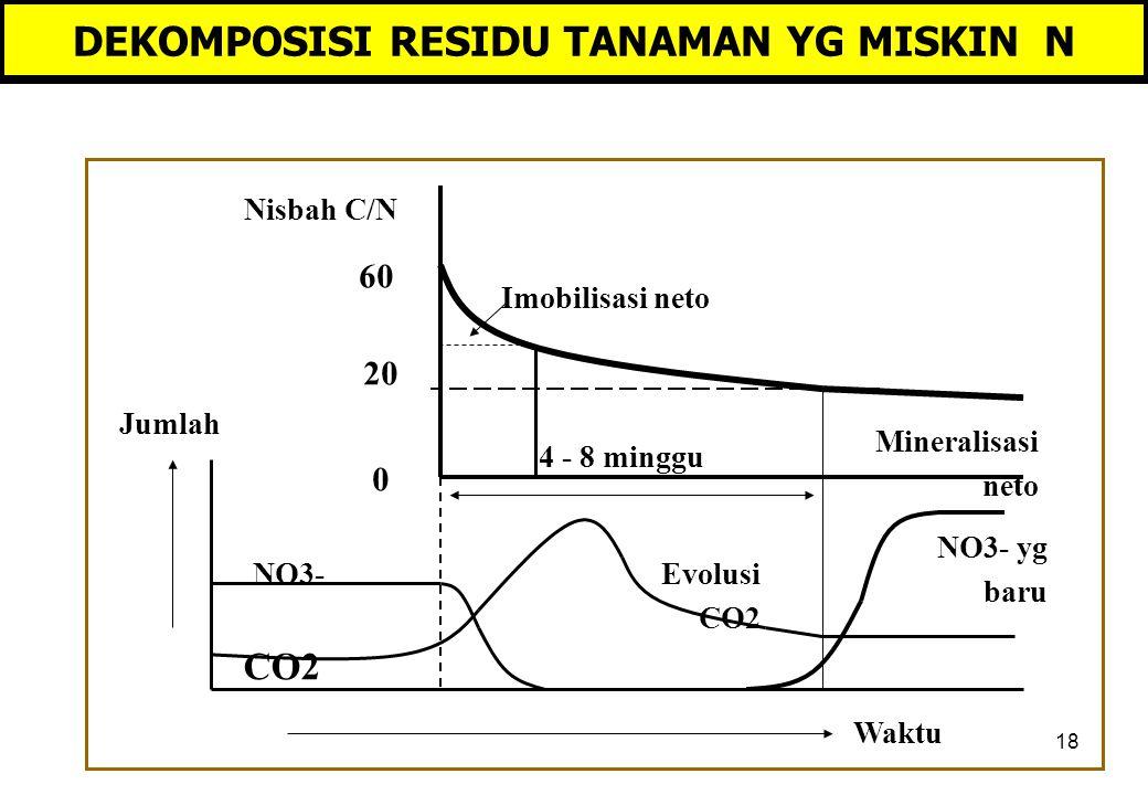 18 DEKOMPOSISI RESIDU TANAMAN YG MISKIN N Jumlah Waktu CO2 NO3- NO3- yg baru Evolusi CO2 Mineralisasi neto Imobilisasi neto Nisbah C/N 60 0 20 4 - 8 minggu