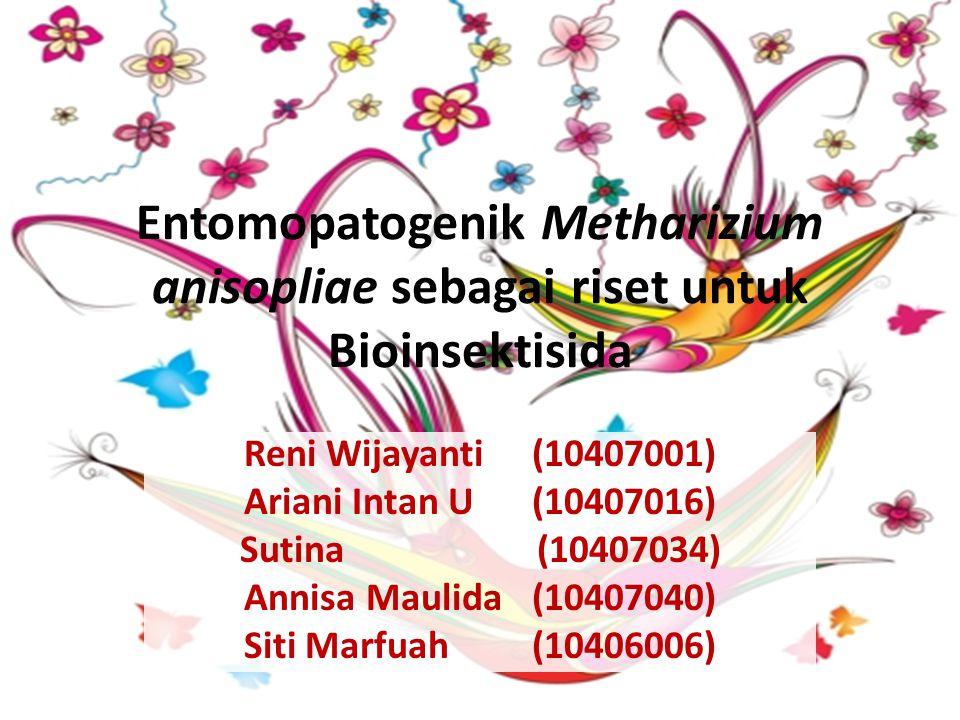 Entomopatogenik Metharizium anisopliae sebagai riset untuk Bioinsektisida Reni Wijayanti(10407001) Ariani Intan U(10407016) Sutina (10407034) Annisa Maulida(10407040) Siti Marfuah(10406006)