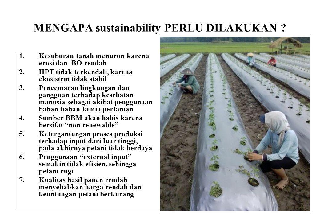 21 MENGAPA sustainability PERLU DILAKUKAN ? 1.Kesuburan tanah menurun karena erosi dan BO rendah 2.HPT tidak terkendali, karena ekosistem tidak stabil