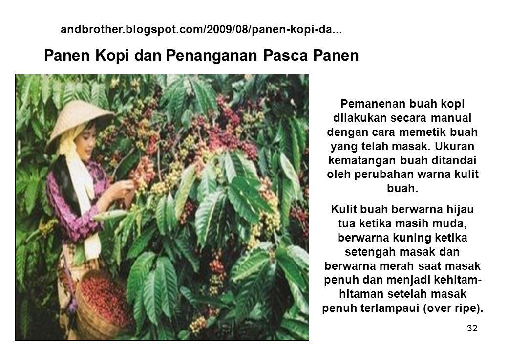 32 andbrother.blogspot.com/2009/08/panen-kopi-da...