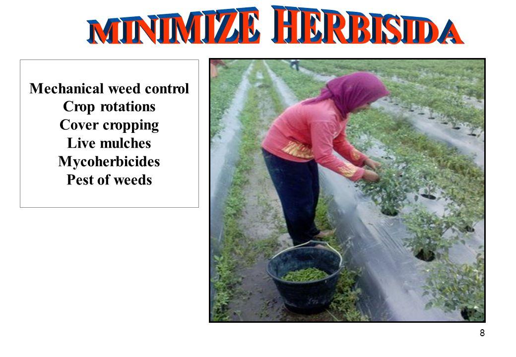 19 1.SOIL EROSION & RUN- OFF 2. Pencucian hara = Nutrients leaching 3.