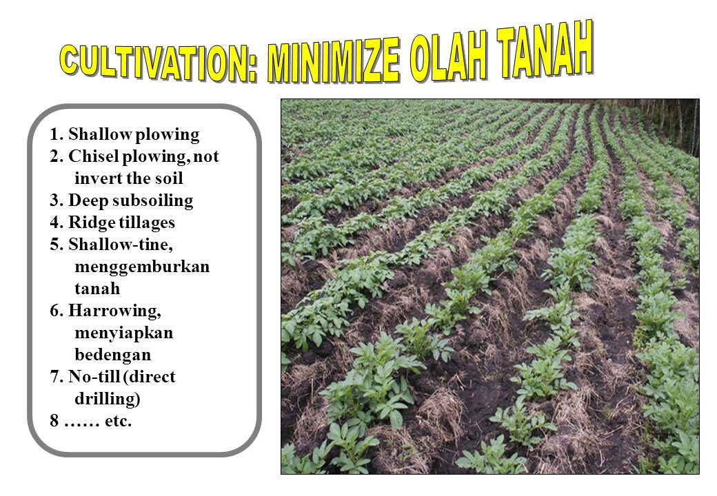 9 1. Shallow plowing 2. Chisel plowing, not invert the soil 3.