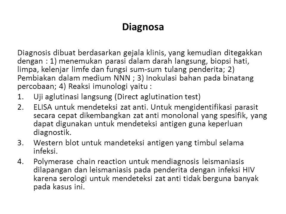 Diagnosa Diagnosis dibuat berdasarkan gejala klinis, yang kemudian ditegakkan dengan : 1) menemukan parasi dalam darah langsung, biopsi hati, limpa, k